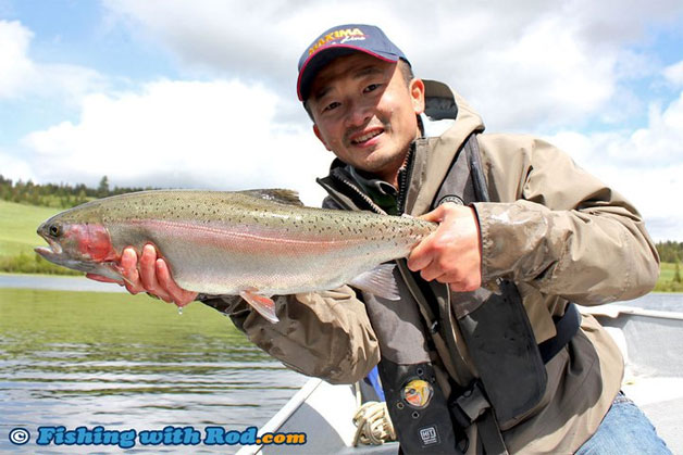 Best Bait For Lake Trout Vancouver Island